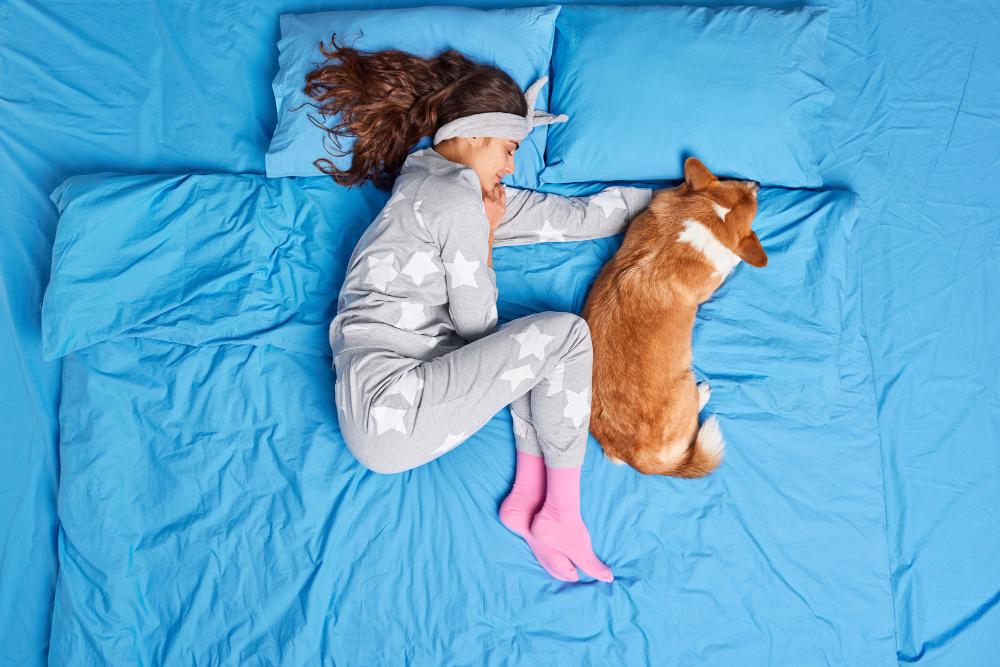 Dormir con nuestra mascota, ¿sí o no?